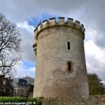 Le Château de Cigogne de La Fermeté un fortin