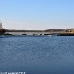 Les étangs de Vaux et de Baye un beau milieu écologique