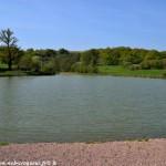 Étang du Bonneau un plan d'eau de Pouques Lormes