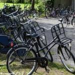 Canal du Nivernais à bicyclette