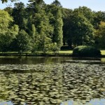 Étang de Pinet Nièvre Passion
