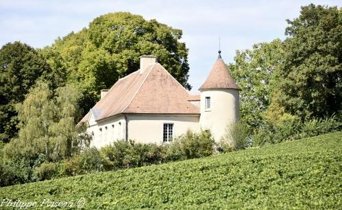 Château de Mocques de Saint-Martin-sur-Nohain
