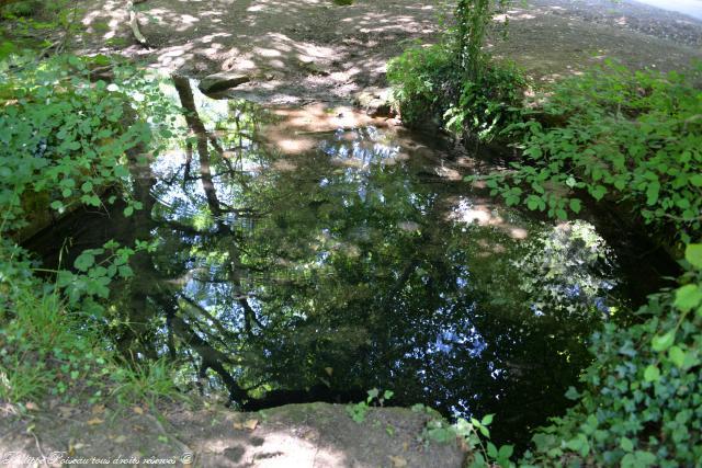 Fontaine de la Vache une remarquable source
