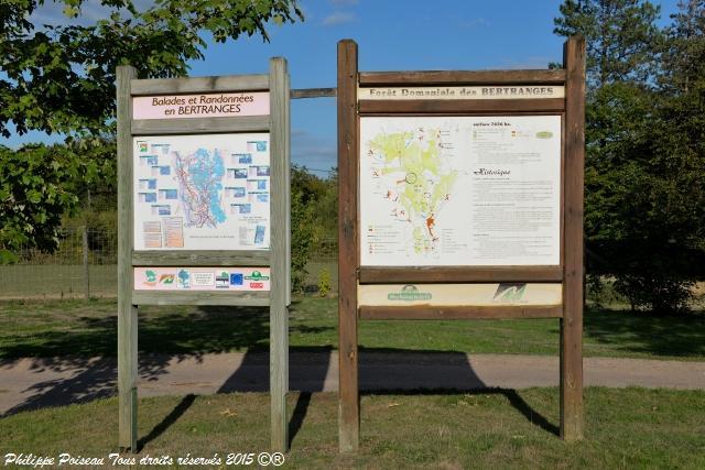 Forêt des Bertranges Arboretum – Patrimoine forestier