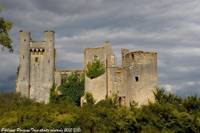 Château de Passy les Tours