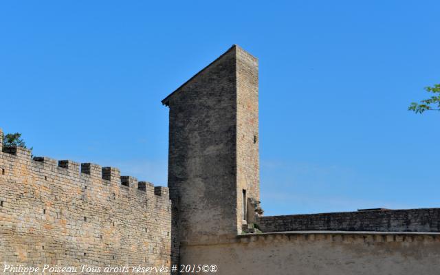 Tour de Buttevant de la magnifique Abbaye de Cluny