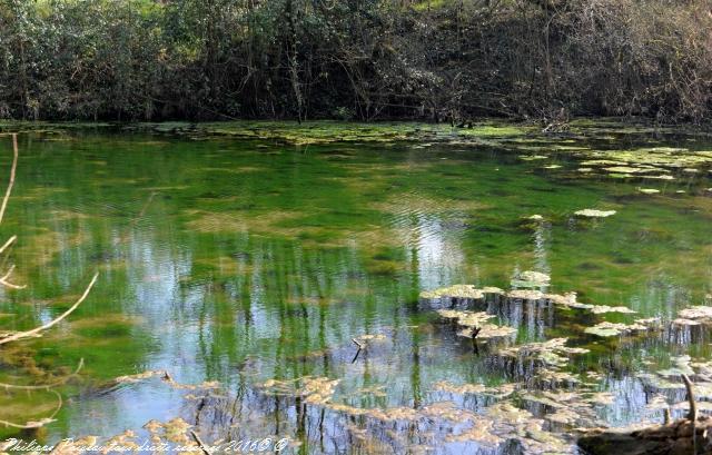 Gour des Fontaines de Sougy Sur Loire – Patrimoine